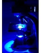 Microscopi a fluorescenza