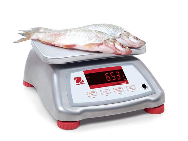 Strumenti-misurazione-settore-alimentare
