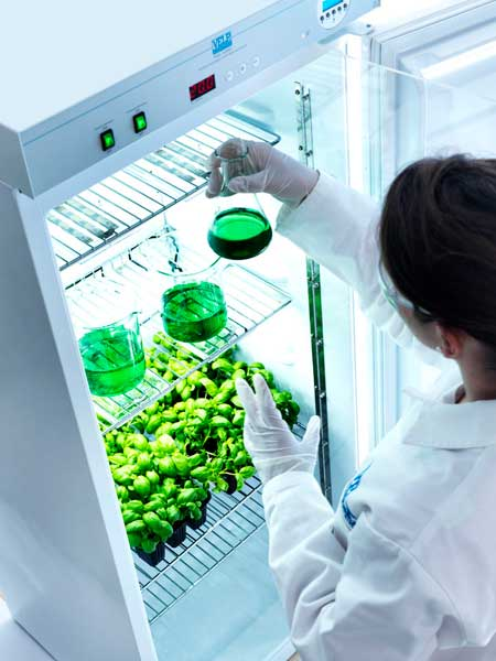 frigotermostato-da-laboratorio-chimico